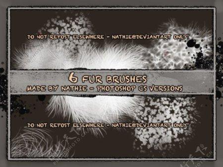 6种自然毛皮毛发笔刷