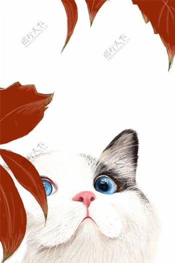 可爱猫星人主题边框
