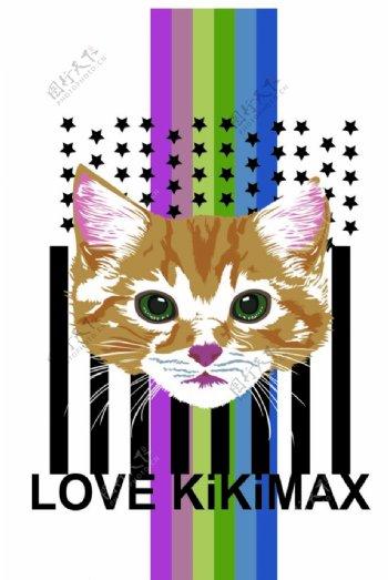 小猫彩虹小猫