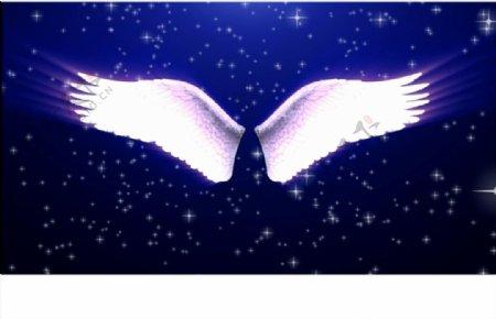 梦幻婚礼天使翅膀闪耀唯美动素材