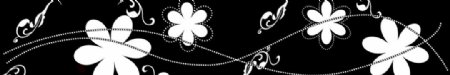 黑底线条太阳花图片