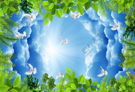 蓝天白云白鸽天空