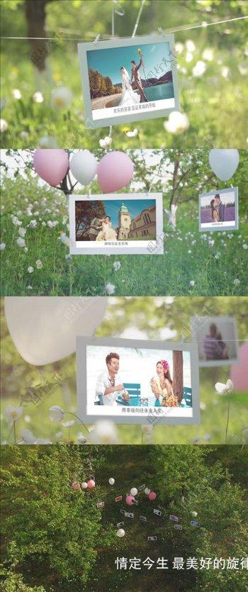 清新浪漫婚礼AE模板