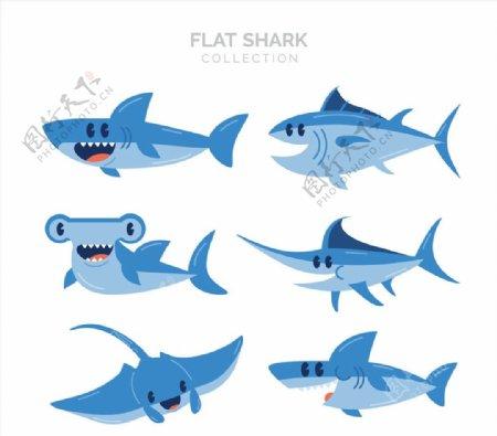 款蓝色鱼类图片