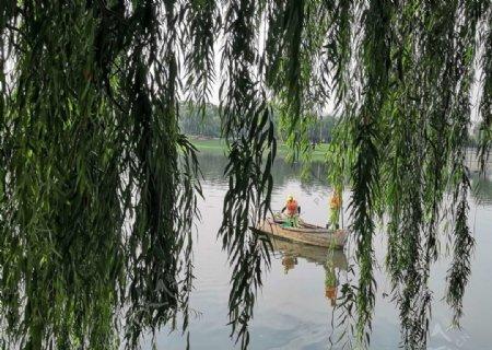 河边的小船和柳树图片
