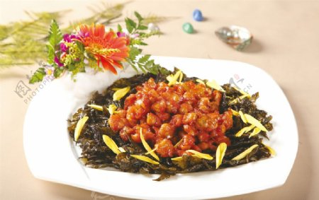茶花凤节图片