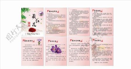 藏红花中药图片