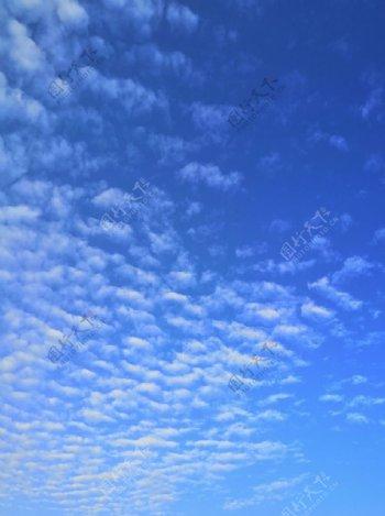 鱼鳞云图片