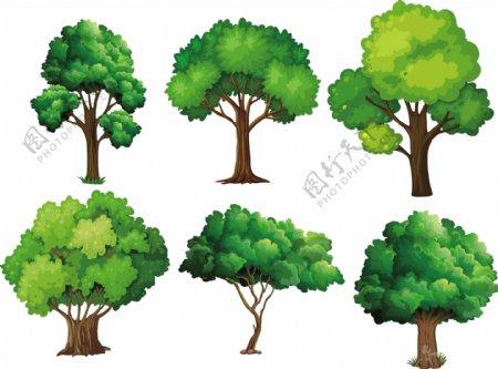 水彩大树图片