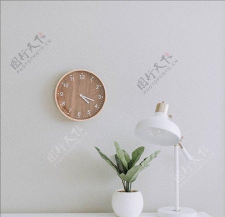 钟表灯植物生命家居图片