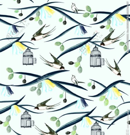 燕子鸟图片