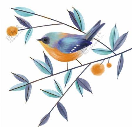 手绘鸟图片