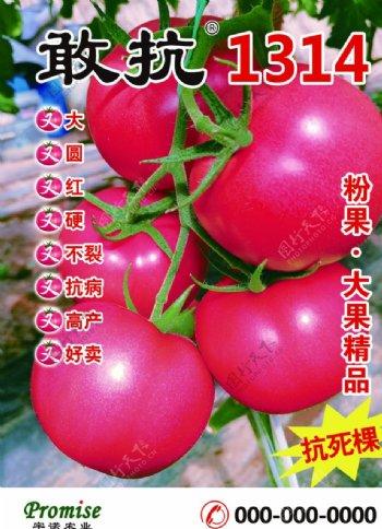 宇诺农业海报图片