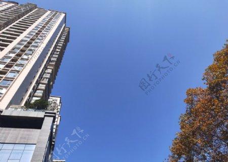蓝天白云高楼大厦图片