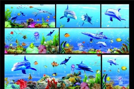 海底世界海豚珊瑚图片