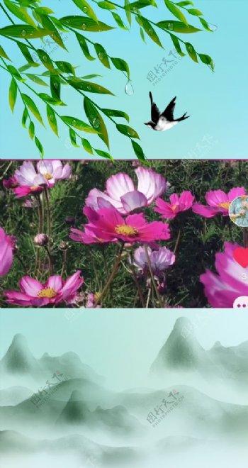抖音PR视频模春天版图片