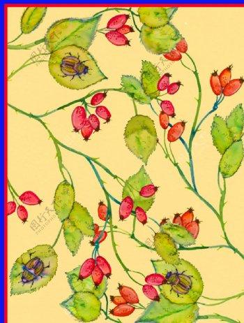 红花绿叶图片