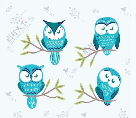 蓝色猫头鹰图片