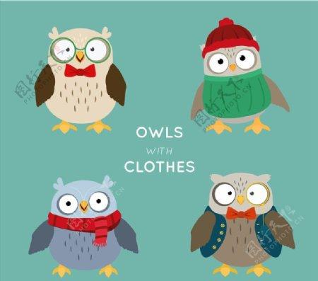 可爱冬装猫头鹰图片