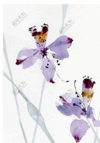 水墨兰花矢量素材图片