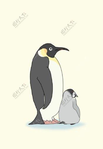 企鹅插画图片