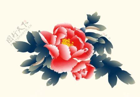 牡丹花素材插画图片