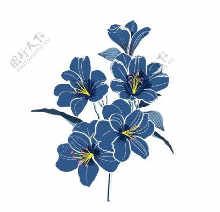 手绘蓝色花朵植物图片