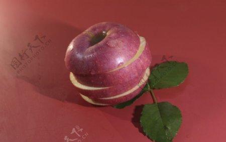 红色底板上的苹果拍摄素材图片