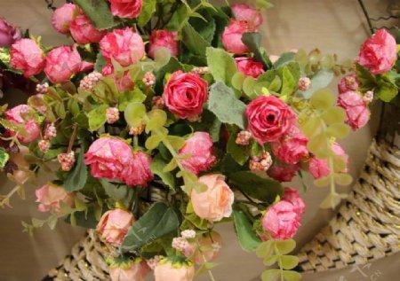 鲜花花蓝图片
