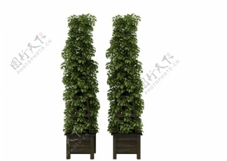 植物架子3d模型图片