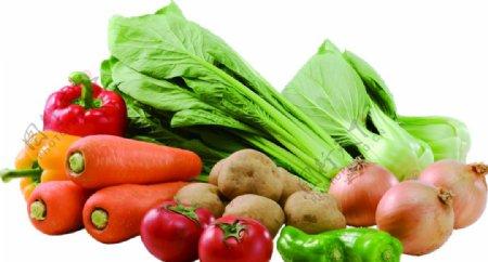 胡萝卜青椒洋葱大白菜透明素材图片