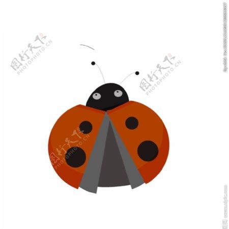 瓢虫汽车插画图片