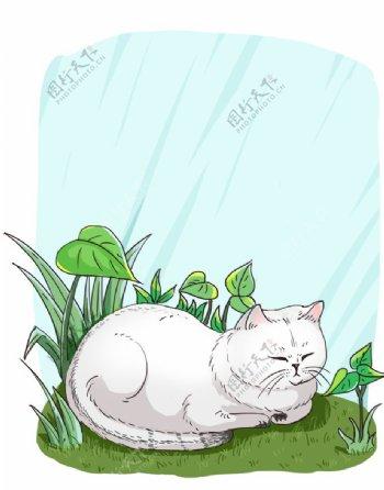 白色卡通猫咪图片