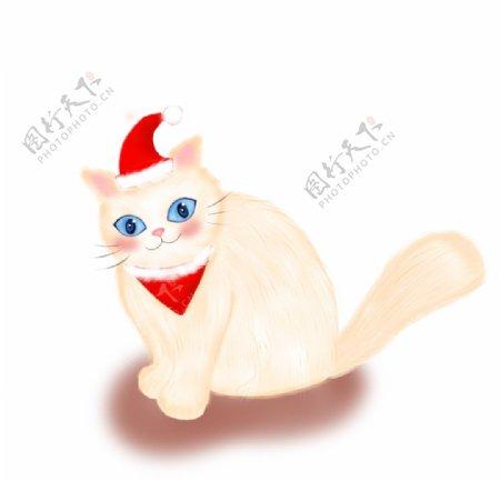 带圣诞帽的小猫图片