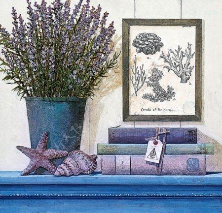 美式海星蓝色装饰画图片