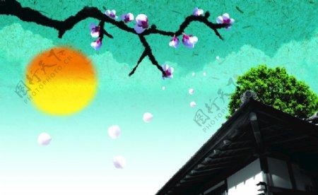 中国风背景绿天太阳梅图片