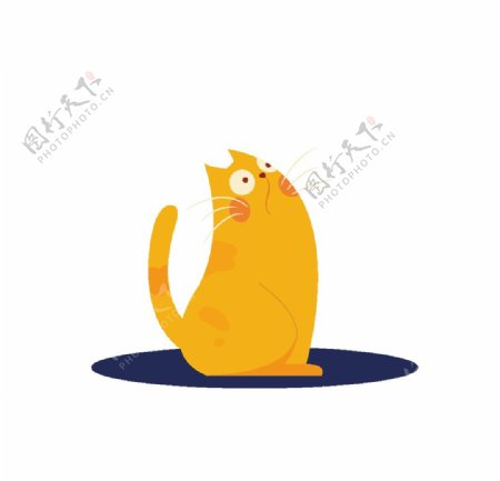 橘色的小猫图片