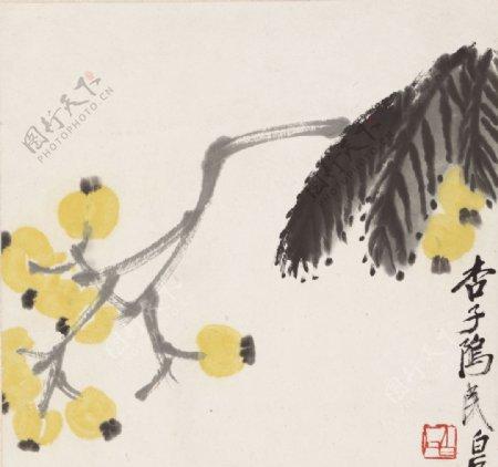 齐白石国画枇杷图图片