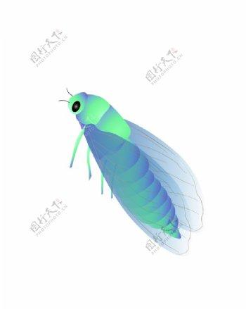 手绘卡通知了蝉昆虫动物插画图片