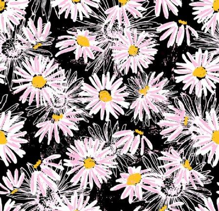 抽象菊花图片