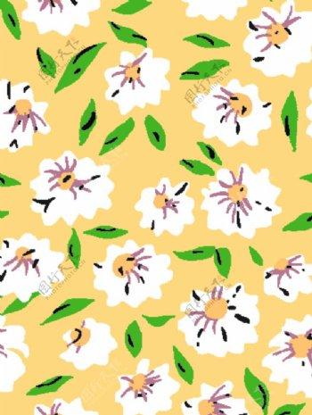 雏菊小碎花图片