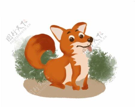 草丛旁的小狐狸图片