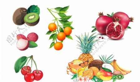 水果手绘猕猴桃橘子樱桃图片